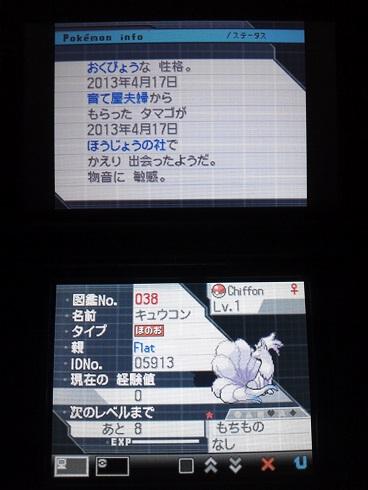 No.038 ★キュウコン-2