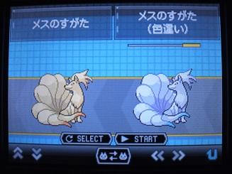 No.038 ★キュウコン-3
