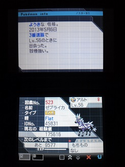 No.523 ★ゼブライカ-3