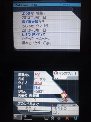 No390 ★ヒコザル-2