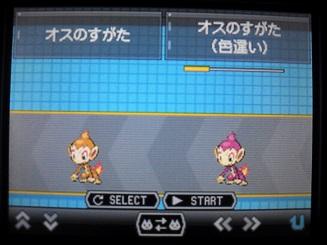 No390 ★ヒコザル-3
