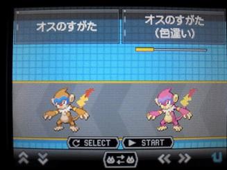 No391 ★モウカザル-3