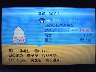 No221 ★イノムー-2