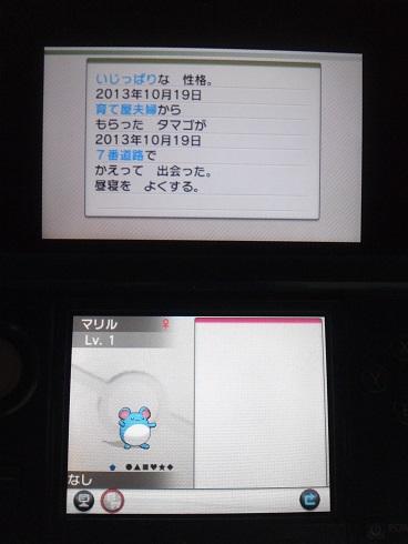 6v_2.jpg