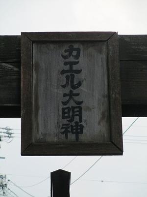 かえる130816