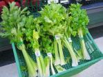 800px-Celery_1.jpg