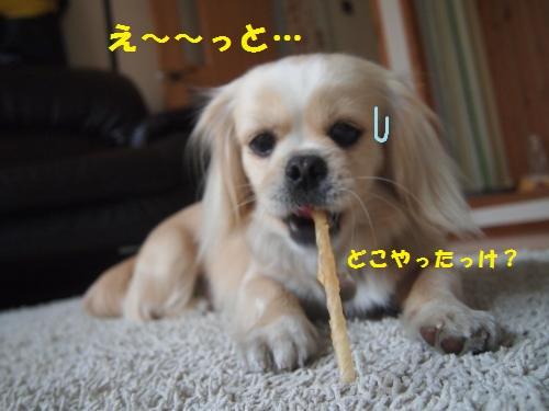 001_convert_20130419164124.jpg