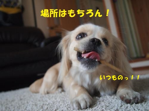 002_convert_20130419164208.jpg