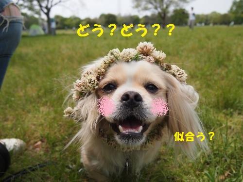 002_convert_20130507223709.jpg