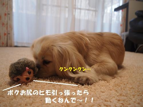 002_convert_20130524160851.jpg