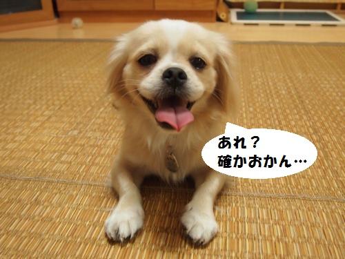 002_convert_20130924214749.jpg