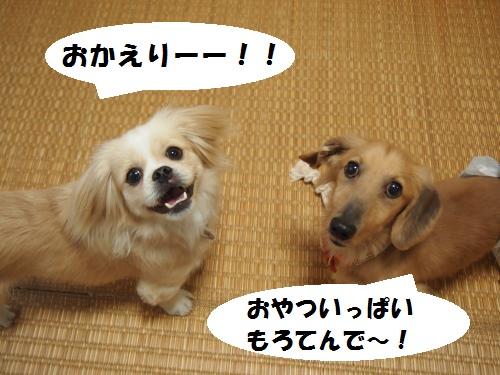003_convert_20130617154121.jpg