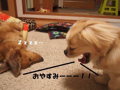 003_convert_20130807142307.jpg