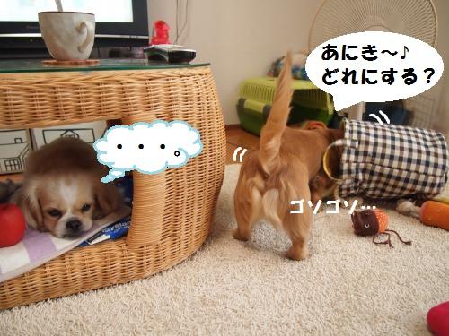 003_convert_20131003154740.jpg