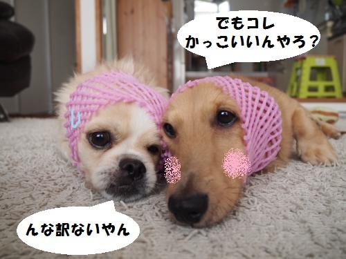 003_convert_20131009222022.jpg