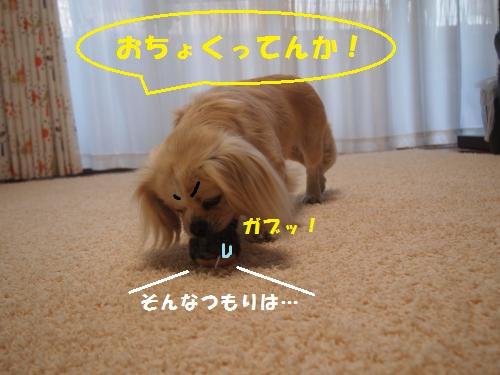 004_convert_20130524160951.jpg