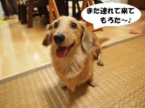 004_convert_20130924214823.jpg