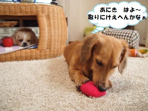 004_convert_20131003154810.jpg
