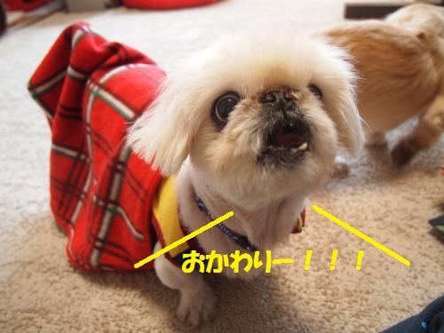006_convert_20130406212221.jpg