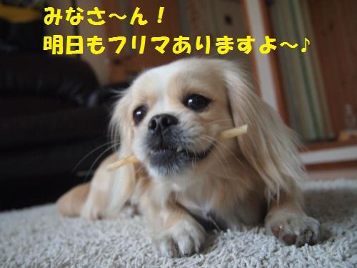 006_convert_20130419164338.jpg