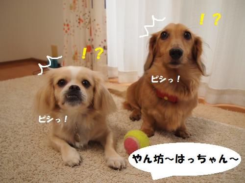 008_convert_20131023160428.jpg