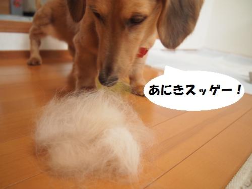 013_convert_20130730214541.jpg