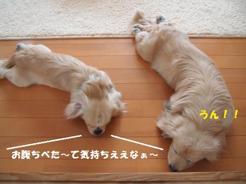 014_convert_20130428222500.jpg