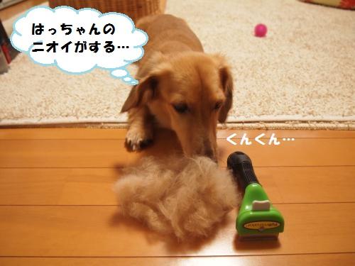 014_convert_20130905152747.jpg
