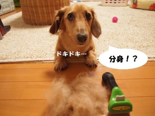 015_convert_20130905152801.jpg
