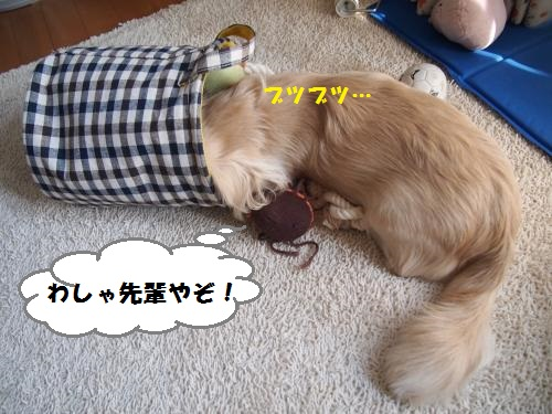 015_convert_20130919152312.jpg