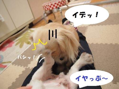 026_convert_20130413224645.jpg