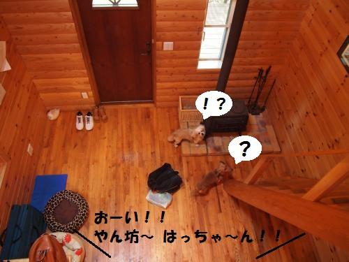 032_convert_20130722184320.jpg