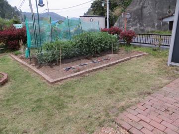 4-17北の庭左雑草
