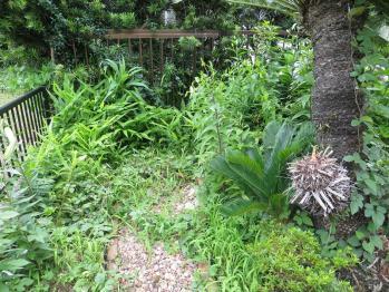 6-30南花壇3
