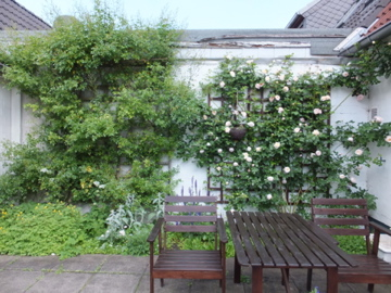 テラスの花壇