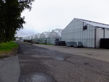 カルーナ生産農場