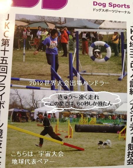 ドッグスポーツジャーナル3月号
