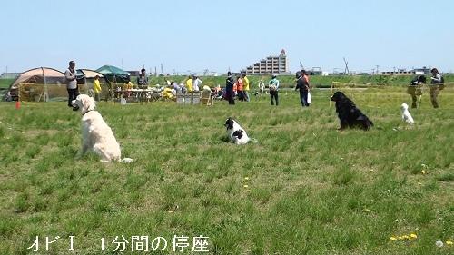 2013春季本部訓練競技会