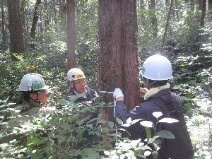 森の健康診断(0929)c