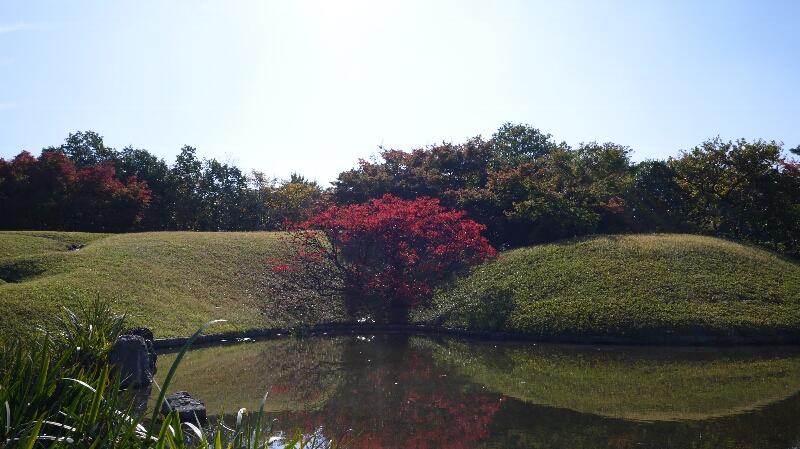 20131114梅小路公園2