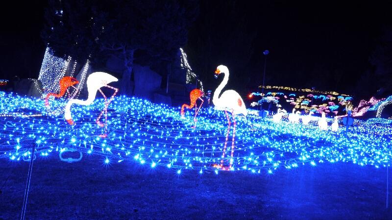 るり渓温泉イルミネーション5