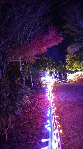 るり渓温泉イルミネーション8
