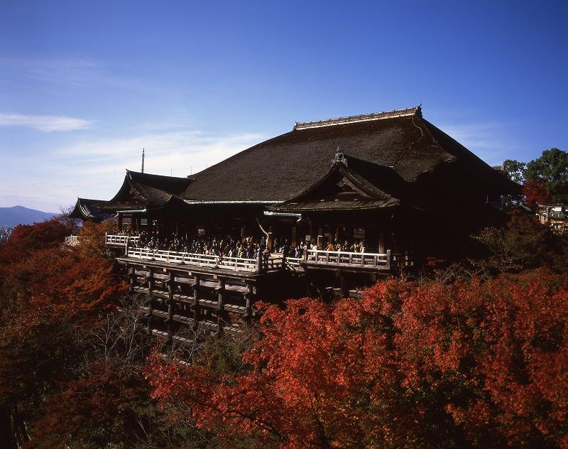 清水寺の紅葉5