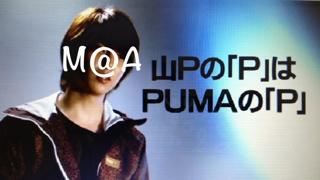 puma-p