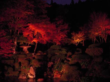 雲龍寺 もみじ庭園のライトアップ