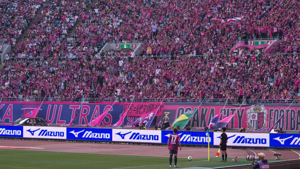 rum20130508_pink.jpg