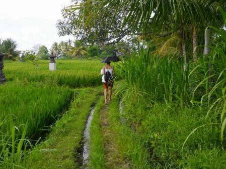 田んぼ道を歩く
