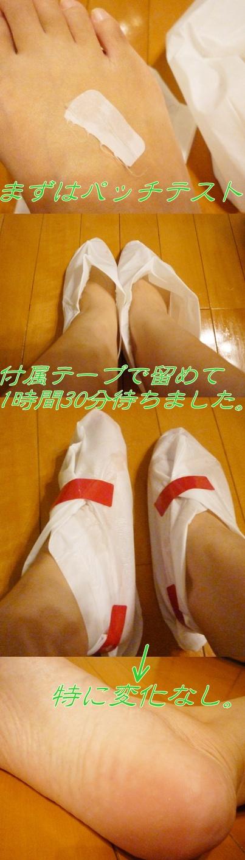 P1070292-vert.jpg