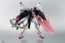 ROBOT魂 クロスボーン・ガンダムX1フルクロス01