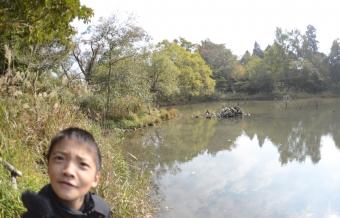 2013_11_17_12.jpg